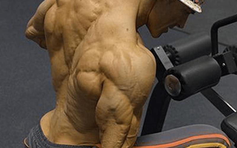 Como Queimar Gordura Enquanto Ganhar Massa Muscular?