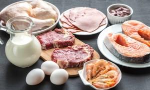 come muitos proteins